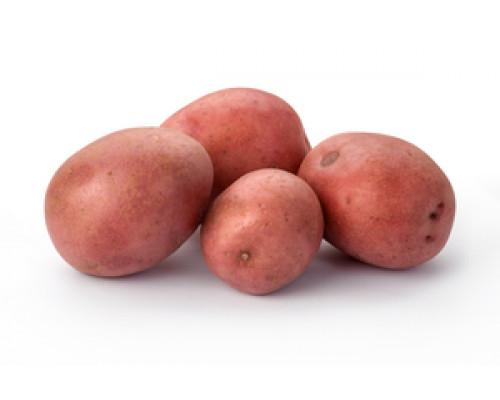 Картофель красный ТМ Фермика