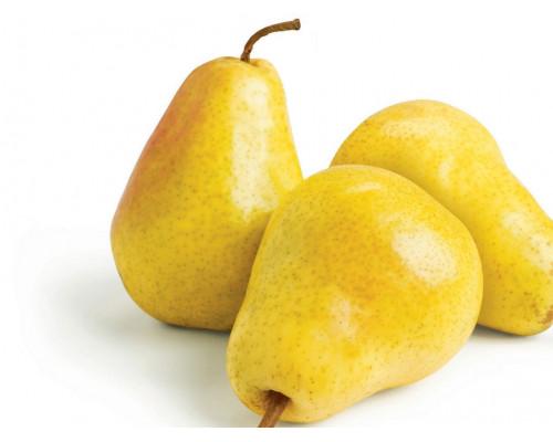Груша желтая