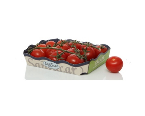 Томаты (помидоры) Черри ТМ Sanlucar (Санлука)
