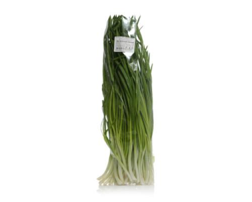 Лук зелёный свежий TM Зелёная Грядка