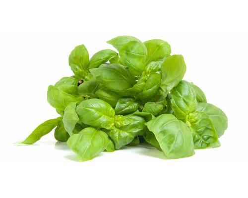 Базилик зеленый 100г
