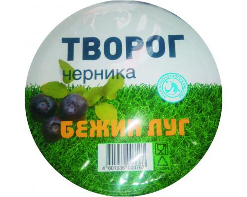 Творог Бежин луг черника, 4,2%, 160 г