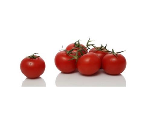 Томаты (помидоры) Рубин на ветке ТМ Sunlucar (Санлука)