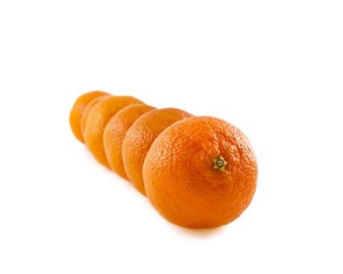 Апельсины ТМ Bollo (Болло)